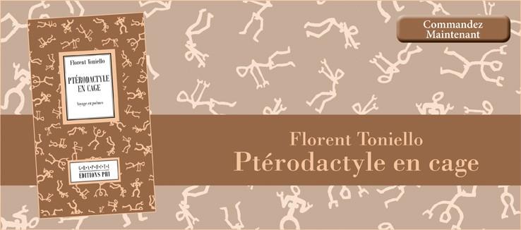 Florent Toniello - Ptérodactyle en cage
